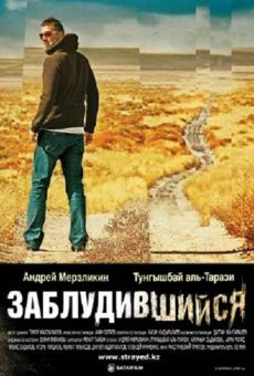Ver película Strayed
