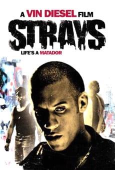 Ver película Strays