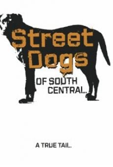 Película: Street Dogs of South Central
