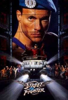 Ver película Street Fighter: la última batalla
