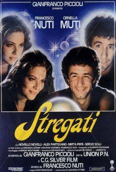 Ver película Stregati