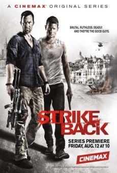 Ver película Strike Back: Project Dawn