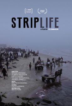 Striplife on-line gratuito