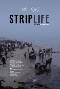 Striplife online