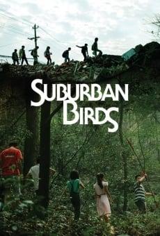 Suburban Birds online