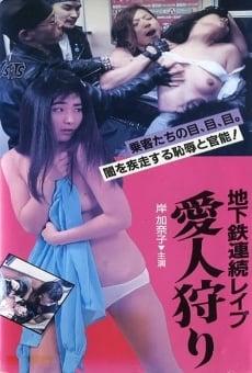 Ver película Subway Serial Rape: Lover Hunting