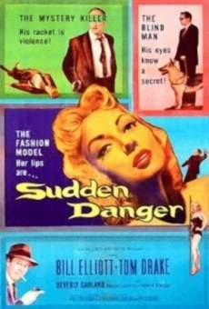 Ver película Sudden Danger