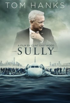 Sully online free