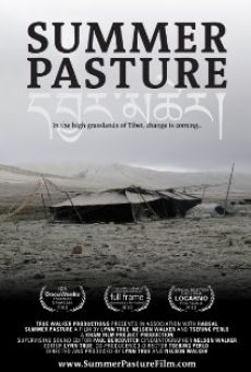Watch Summer Pasture online stream