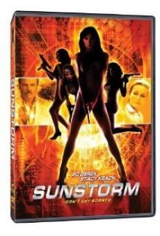 Ver película Sunstorm