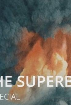 Ver película Superbombas