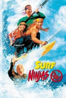 Ver película Surf Ninjas
