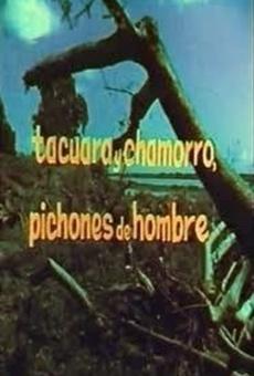 Ver película Tacuara y Chamorro, pichones de hombres