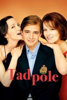 Ver película Tadpole