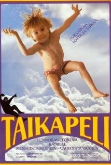 Ver película Taikapeli