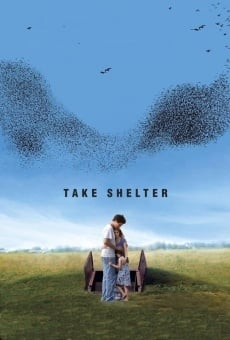 Ver película Take Shelter