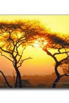 Ver película Tanganica