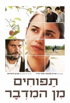 Ver película Tapuhim Min HaMidbar