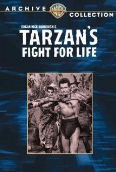 Le combat mortel de Tarzan