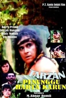 Ver película Tarzan: Treasure Watcher