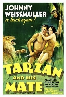 Tarzan and His Mate on-line gratuito