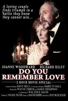 Ver película ¿Te acuerdas del amor?