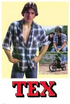 Tex on-line gratuito