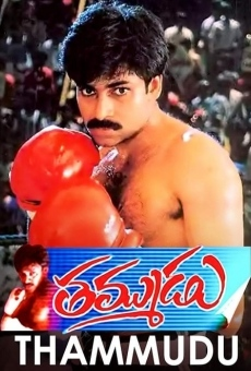 Ver película Thammudu