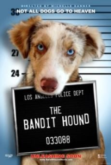Watch The Bandit Hound online stream