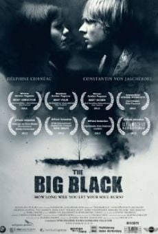Ver película The Big Black