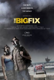 The Big Fix en ligne gratuit