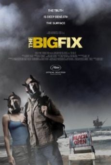Película: The Big Fix