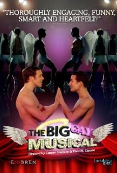 Ver película The Big Gay Musical