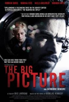 Ver película The Big Picture