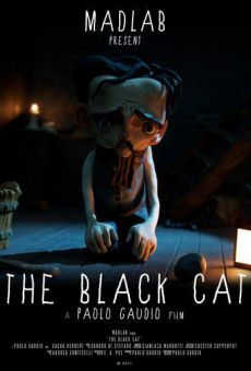 Ver película The Black Cat