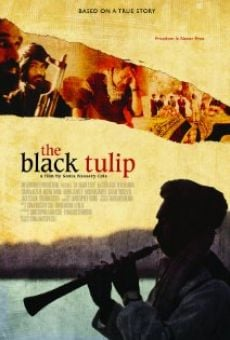 Ver película The Black Tulip