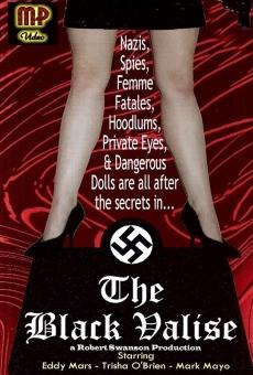 Ver película La valija negra