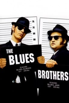 The Blues Brothers online gratis