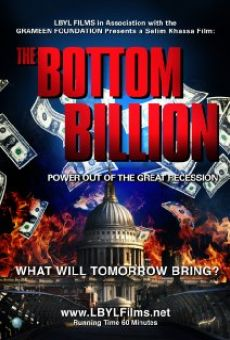 Ver película The Bottom Billion