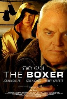 Watch The Boxer online stream