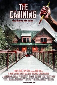 Ver película The Cabining