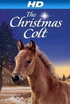The Christmas Colt online streaming