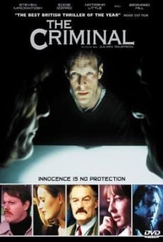 Ver película The Criminal