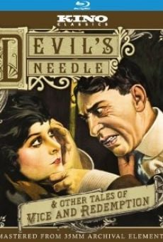 Ver película The Devil's Needle
