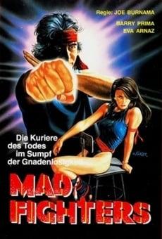 Ver película The Fighters