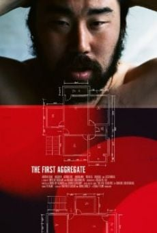 Ver película The First Aggregate