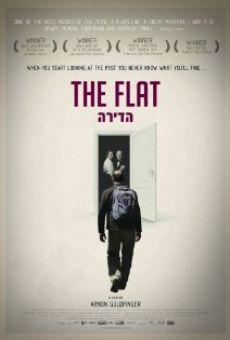 Ver película The Flat