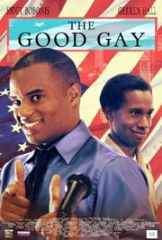 Ver película The Good Gay