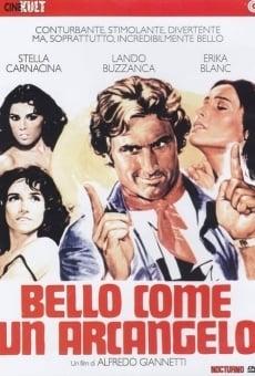 Ver película The Handsome Devil