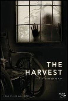Ver película The Harvest